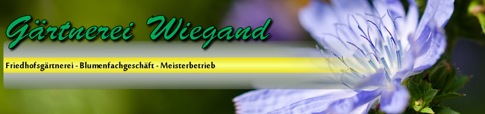 Wiegand_Logo_3.7.png
