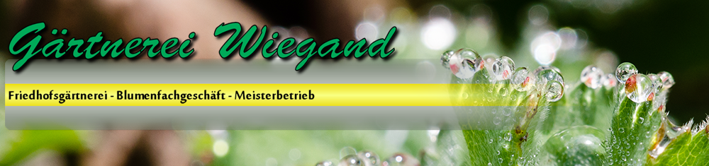 Wiegand_Logo_3.8.png